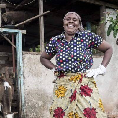 Amps for animals: greening Africa's livestock sector.jpg