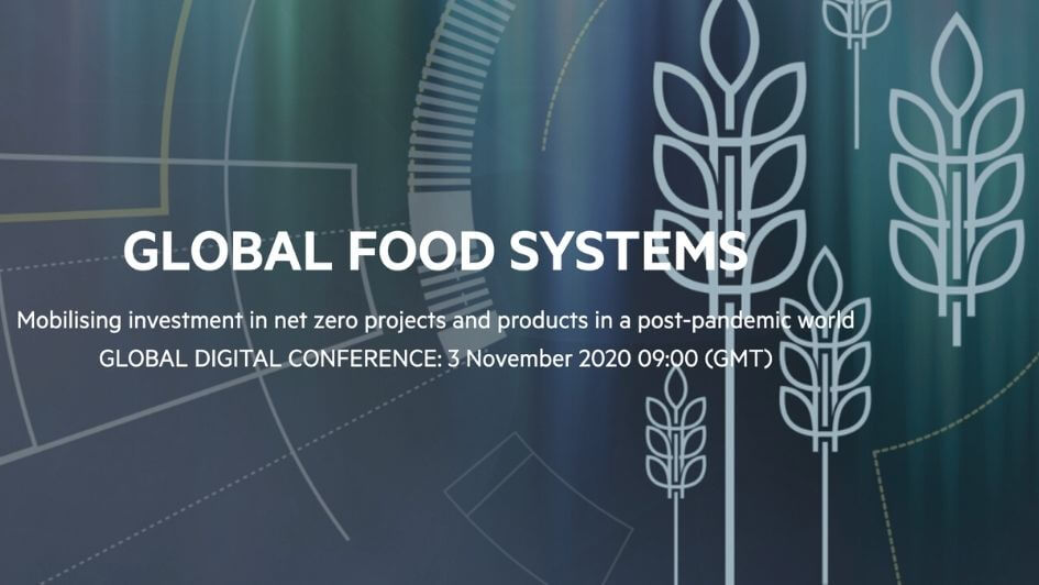 FT Global Food Systems 2020.jpg